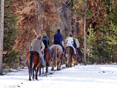 Winter Trail Ride